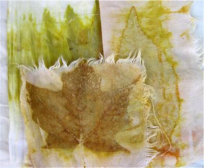 Eco prints oct '11