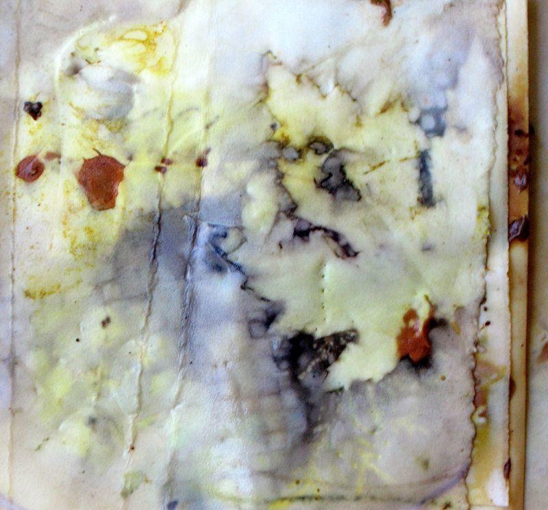 imprint, Diana Trout