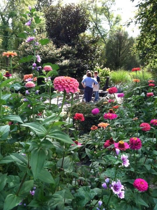 The Garden, Brenda Howell