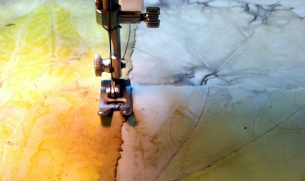 Leaf a Trail, Diana Trout