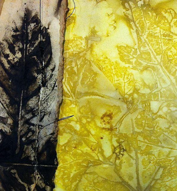 Eco Prints, Diana Trout