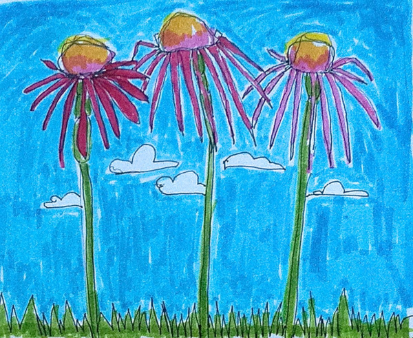 3 daisies, diana trout