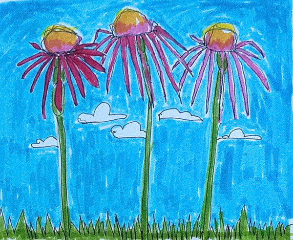pink daisies, Diana Trout