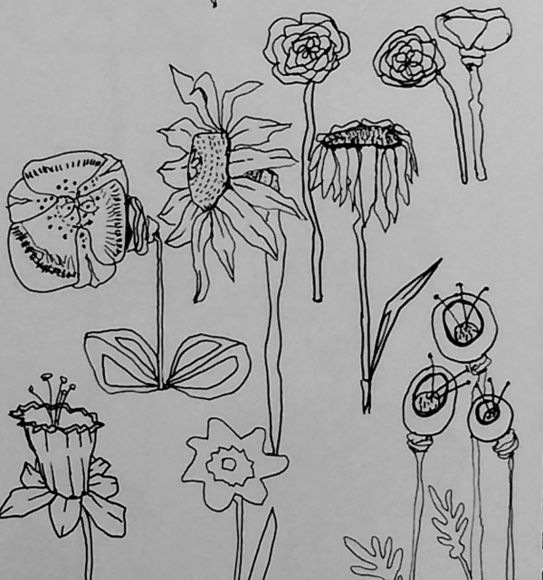 Drawings for Embroidery, Diana Trout