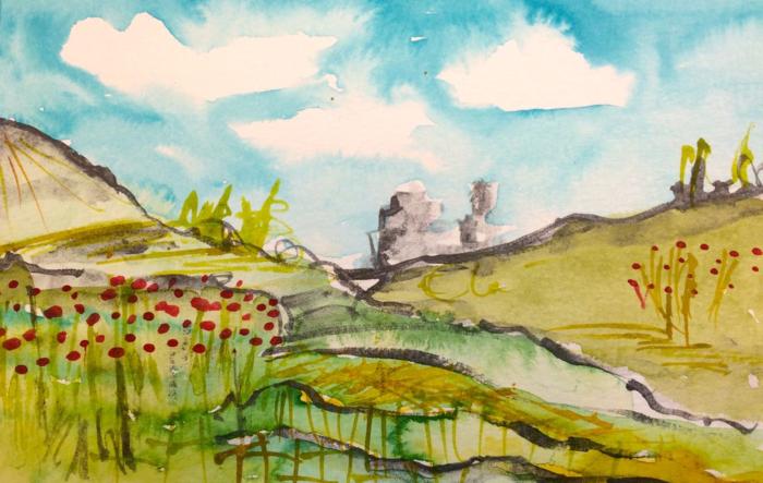 Poppy field, Diana Trout